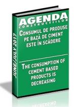 Analiza pietei de ciment, aditivi, betoane si agregate pe anul 2017