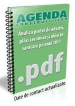 Analiza pietei de adezivi, placi ceramice si obiecte sanitare pe anul 2012