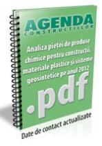 Analiza pietei de produse chimice pentru constructii pe anul 2012