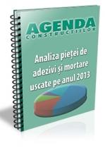 Analiza pietei de adezivi si mortare uscate pe anul 2013