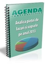 Analiza pietei de lacuri si vopsele pe anul 2013