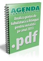 Analiza pietei de tubulatura si fitinguri pentru instalatii pe anul 2013