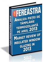 Analiza pietei de tamplarie termoizolanta pe anul 2013