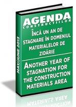 Analiza pietei de caramida, BCA si prefabricate pe anul 2013